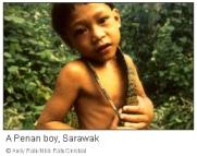 penan-boy