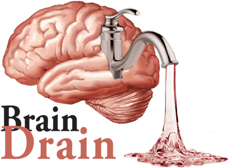 Essay on the problem of brain drain