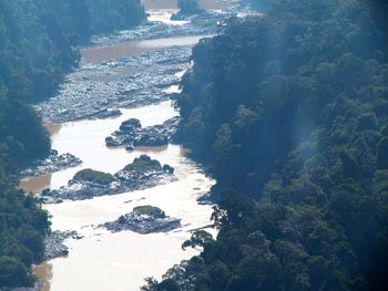 The Mighty Rajang River Not So Mighty After All Hornbill Unleashed
