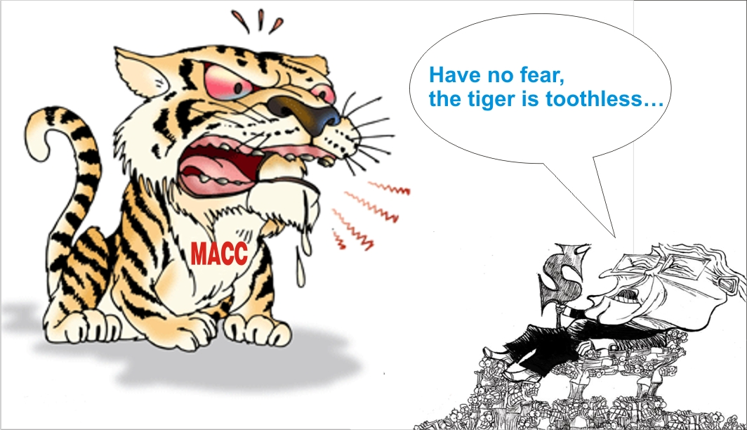 Image result for MACC a toothless tiger